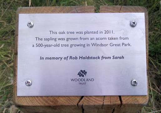 The marker by Rob's oak